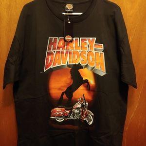Harley Davidson 2000
